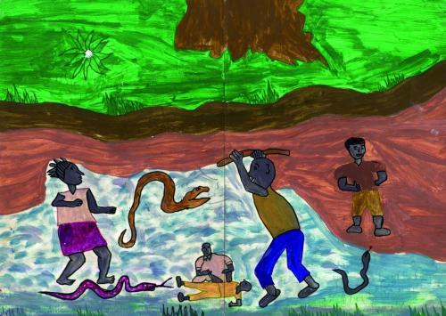 animaux013AfGuiTawAlphaCamaraSerpents
