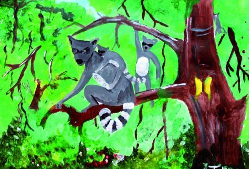 animaux022AfMadaMasoTodinianaRatonsLaveursjpg