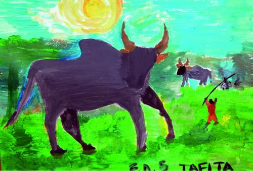 animaux023AfMasoMadaTafitaBuffle